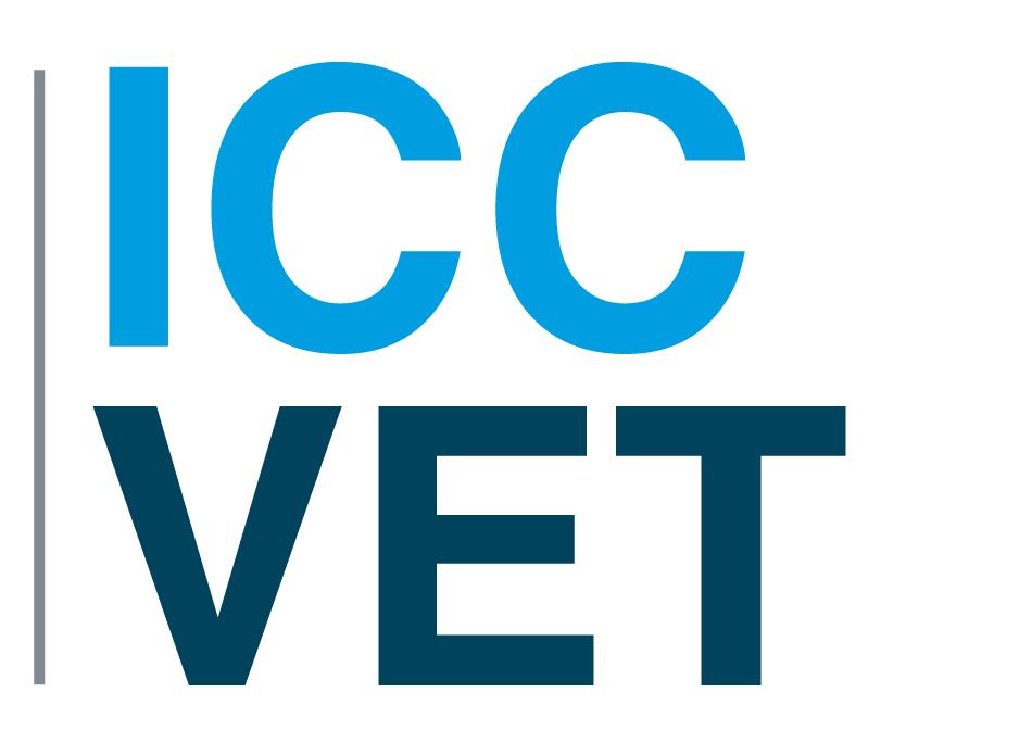 ICC VET (Convocatoria Erasmus+ Asociaciones Estratégicas)